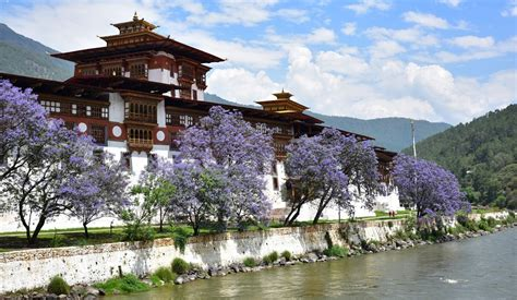 Top five Dzongs to visit in Bhutan | Bhutan Holidays