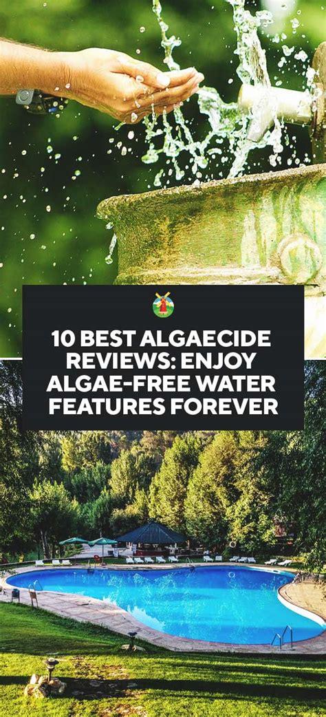 10 Best Algaecide Reviews Enjoy Algaefree Water Features