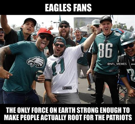funny eagles memes youll  happy