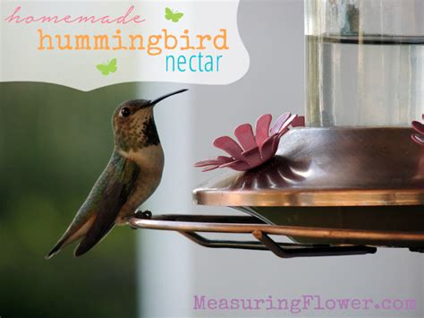 homemade hummingbird nectar measuring flower