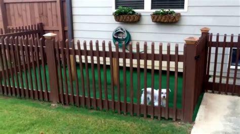 Backyard Dog Kennel Idea!!!! Easy Diy