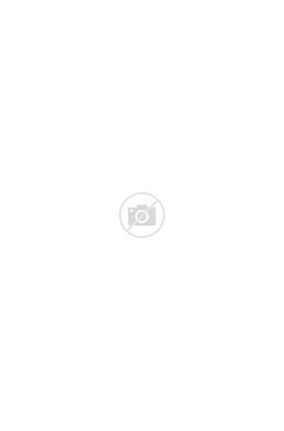 Branding Behance Duck Nu Stores