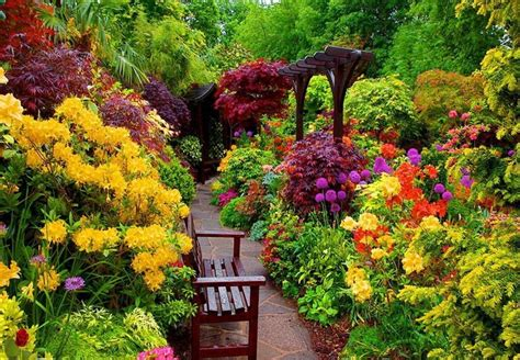 colorful bushes and shrubs colorful border and shrubs gardens pinterest