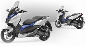 Honda Forza 125 Promotion : le march fran ais de la moto et du scooter repart la moto magazine leader de l ~ Melissatoandfro.com Idées de Décoration