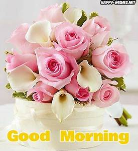 50 Good Morning Wishes With Rose Picture Happy Wishes