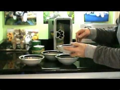 animals instinct pet food warmer demo  dogs  cats