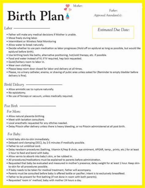 birth plan template sle birth plan form template worksheet