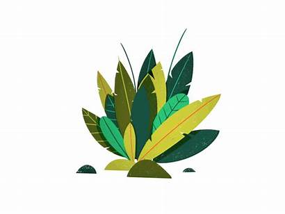 Plants 2d Dribbble Effects Lighting Test Icon