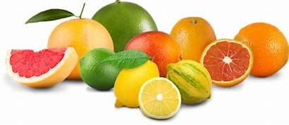 Limoneira Citrus Fruit Landing