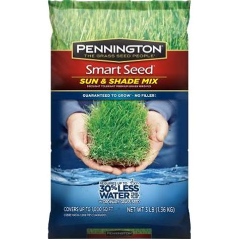 Pennington Smart Seed 3 Lb Sun And Shade Central Grass