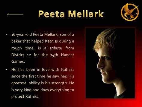 make a hunger character the hunger games