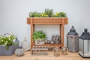 hochbeet akazie von depot mit fruhlingsbluhern krautern With katzennetz balkon mit vertical garden kaufen