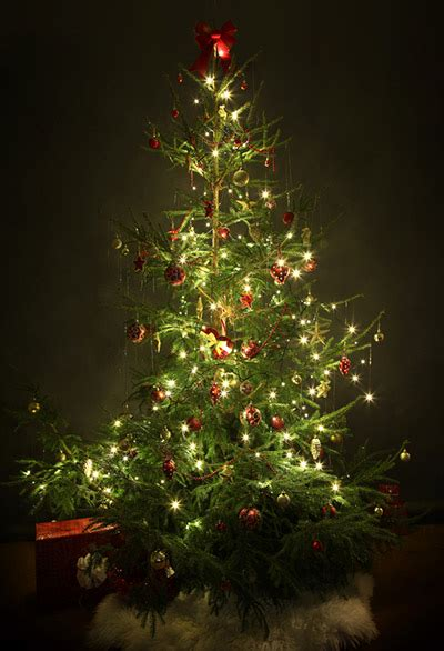 can you still buy xmas tensil the 8 basics of decorating your tree register