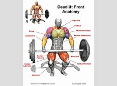 Deadlifts Benefits