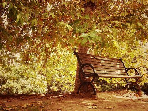 autumn bench landscapes nature park wallpaper