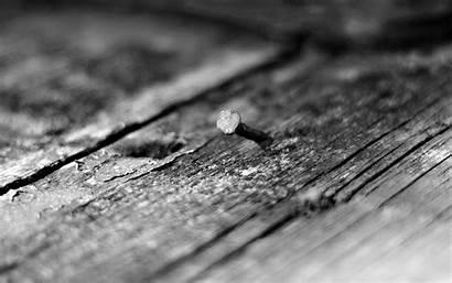 Depth Wood Macro Texture Field Monochrome Backgrounds