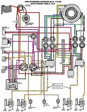 1985 Mercury Wiring Diagram 40777 Aivecchisaporilanciano It