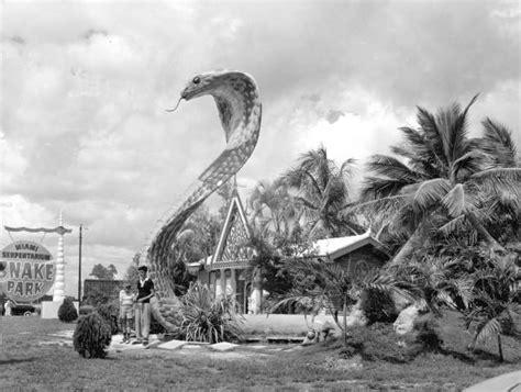 florida memory huge cobra sculpture   miami