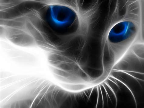 Fierce Animal Wallpapers - cat computer wallpapers desktop backgrounds 1600x1200