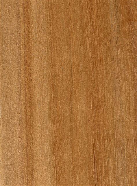 river birch  wood  lumber identification