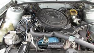 Junkyard Find  1982 Oldsmobile Cutlass Ciera