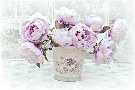 Romantic Lavender Shabby Chic Peonies  Lavender Pink