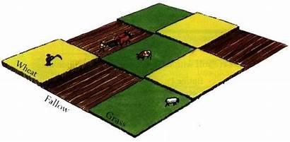 Rotation Three Medieval Field System Feild Steady