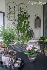 Balkon Wand Verschönern : balkonbegr nung und kletterpflanzen die jede wand glamour ser aussehen lassen stylish living ~ Indierocktalk.com Haus und Dekorationen