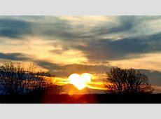 Zitate, Sprüche und Weisheiten über Herz & Liebe