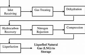 Process Flow Diagram Lng