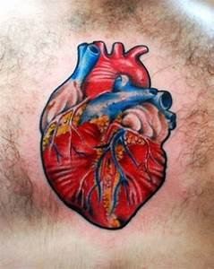Anatomical human heart tattoo on chest - Tattoos Book - 65 ...