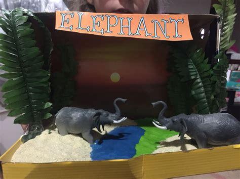 Elephant habitat diorama. 3rd grade project. Everything