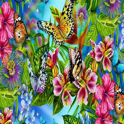 Morning Colorful Wish Colourful Greetings Card Send