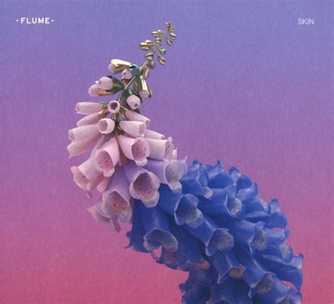 flume cover skin by flume album review