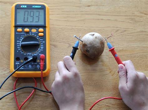 potato battery science fair project