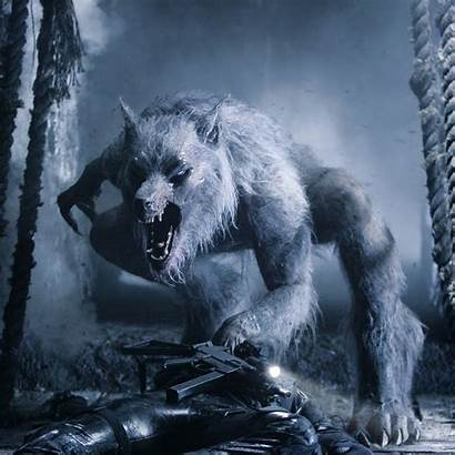 Werewolf Underworld Wolf Wallpapers Creatures Transformations Awesome