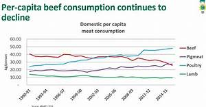 Domestic beef market: Sales value continues to rise, while ...