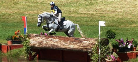 breeds eventing horse levels