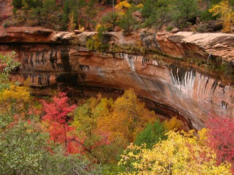 fall   perfect time    emerald pools trail