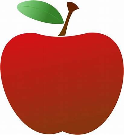 Apple Clipart Teacher Simple Clipartclipart Google Downloads