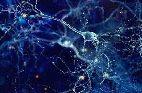 uncovering  neurological connections  covid  pr news