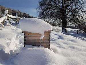 Was Machen Wespen Im Winter : was machen imker im winter bienen honigtropfen blogartikel ~ Lizthompson.info Haus und Dekorationen