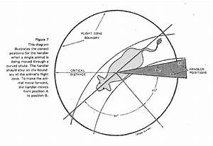 Nancy Lidster  History And Science Of The Flight Zone Diagram