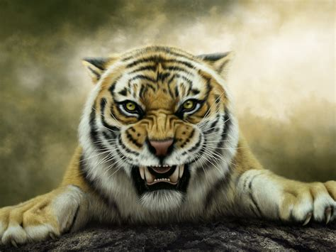 wallpaper tiger artwork roaring animals