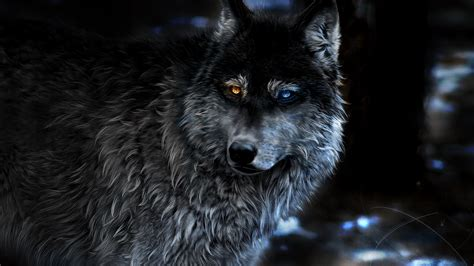 1080p Wolf Wallpaper Hd For Mobile by 1920x1080 Wolf Heterochromia Laptop Hd 1080p