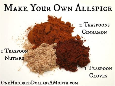 DIY Spice Round Up: 9 Make Your Own Spice Recipes   One