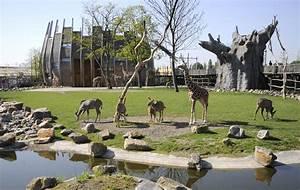 entree dierentuin blijdorp