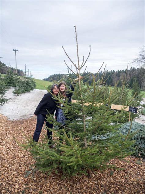 bauers weihnachtsbaum auf dem dentenberg aschiwidmer ch