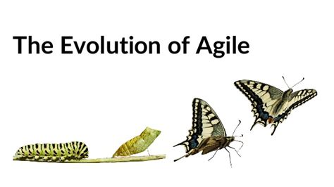 What's The Next Step In The Evolution Of Agile? Enterprise