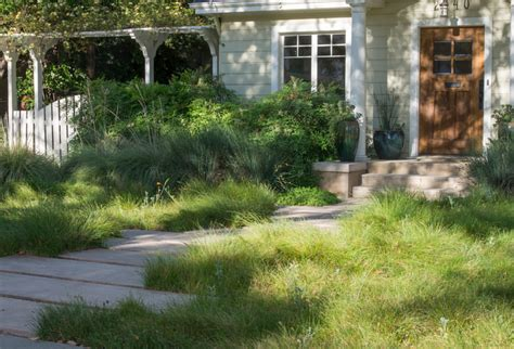 alternatives to grass in backyard alternatives to grass front yard landscaping ideas the 7429